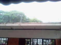Uma tarde quando a chuva resolveu desabar na Praça João Mendes...