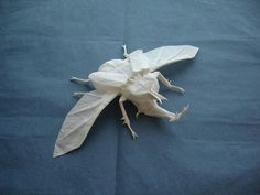 Paper beetle designed & folded by artist Shuki Kato. It's folded from a single 22″ square of tracing paper and has a nearly 10″ wingspan. via colossal