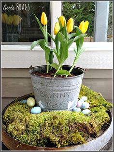 Little Brags: A Touch Of Easter On The Back Deck