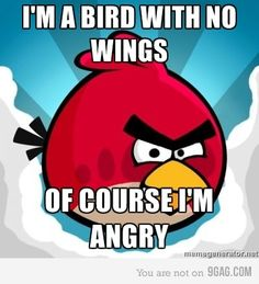 Why there are angry birds