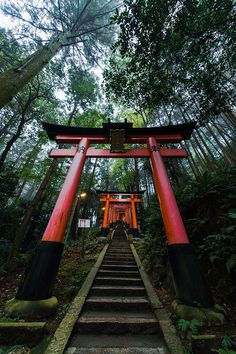 Torii gates at Fushimi Inari shrine, Kyoto, Japan 伏見稲荷 京都