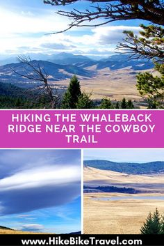 Hiking the Whaleback Ridge near the Cowboy Trail, Alberta