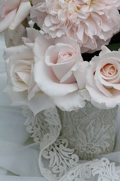 almost white but the pink is so soft you can feel it - Ana Rosa My Flower, Pretty Flowers, Pretty In Pink, Pink Roses, Pink Flowers, Colorful Roses, Shabby Flowers, Pink Lace, White Roses