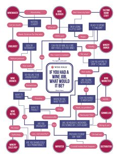 If You Had a Wine Job, What Would It Be? (Flow Chart)