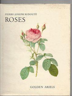 Roses by pierre joseph redoute' golden ariels no. 1 ariel