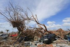 A car is pinned down under a tree in Tacloban City after Typhoon Haiyan made a landfall last Saturday, November 2013 leaving hundreds dead and thousands still missing. November 8, Set Sail, Extreme Weather, Manila, Fishing Boats, Climate Change, Alaska, Philippines, Sailing
