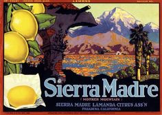 Vintage Pasadena Sierra Madre Lemon Citrus Crate Label