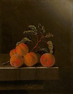 Stilleven met vijf abrikozen, Adriaen Coorte, 1704.