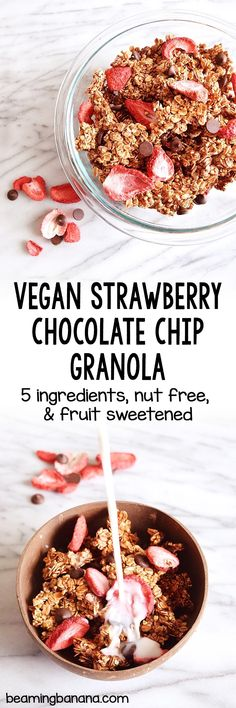 Vegan strawberry chocolate chip granola is sweet, crunchy, and full of strawberries and chocolate chips! Totally nut free and fruit sweetened.