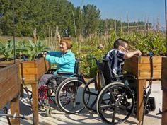 Mesas para personas con #movilidad reducida   http://www.elangreen.com/producto.php?codigo=mesas-adaptadas-TC02
