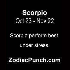 Libra and scorpio match