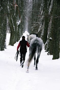 A walk in the snow with her pony! Pretty Horses, Horse Love, Beautiful Horses, Horse Pictures, Horse Photography, Winter Scenes, Horse Riding, Belle Photo, Pets