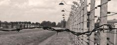 Fakta om Förintelsen | Forum för levande historia