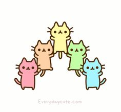 rainbow kitties!