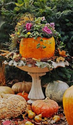 Pumpkin towers are the perfect Halloween pumpkin decoration. Stack pumpkins and gourds to spell words for a cute Halloween decoration trick-or-treaters will love, or decorate your pumpkin decor to match your own style. Autumn Decorating, Pumpkin Decorating, Decorating Ideas, Decor Ideas, Fruits Decoration, Pumpkin Planter, Pumpkin Garden, Pumpkin Flower, Pumpkin Bouquet