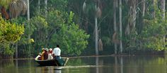 Reserva nacional del Manu - Peru