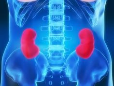4 Minute Healing Sounds Qi Gong for Healthy Kidneys!