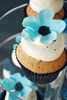 Blue ombre cupcakes mamabearskitchen.blogspot.com