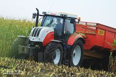 Contractor Ploegmakers from De Rips harvesting maize with a Krone Big X 700 for a local farmer near Vredepeel, The Netherlands. Later there comes a Krone Big X V8 from Alders from Overloon to harvest ...