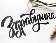 Zdravushka lettering for package design #calligraphy #lettering #type #typography #letters #handlettering #brush #brushlettering #каллиграфия #леттеринг #шрифт #типографика #буквы #кириллица #кисть #здравушка