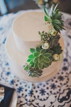 succulent wedding cake from Stephanie's Bakery // photo by Studio Castillero