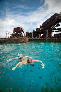 Snorkeling the Tangalooma Wrecks, Moreton Island, Australia Fraser Island Australia, Australia Country, Queensland Australia, Australia Travel, Places To Travel, Travel Destinations, Places To Go, Saint Helena Island, Life Under The Sea