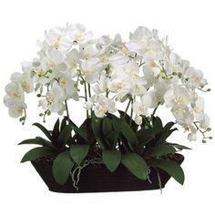 Allstate Floral White Phalaenopsis Orchid Faux Flower Arrangement
