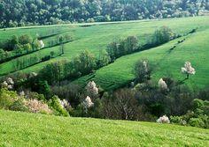 bieszczady mountains in spring, poland / fot. czado