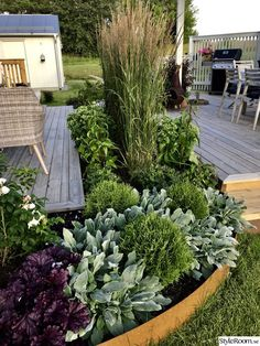 plan discount Newly made discounts around trdck and pergola - H .-planera rabatt Nyanlagda rabatter runt trdck och pergola – Hemma hos plan discount Discounted discounts around trdck and pergola – Home at - Small Garden, Garden Design, Plants, Front Yard Landscaping, Garden Decor, Outdoor Gardens, Garden Planning, Backyard, Pergola