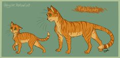 Warriors Cats - Fireheart by VanyCat.deviantart.com on @DeviantArt