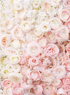 Floral iphone wallpaper follow prettywallpaper for more pretty neutral flowers fine art photograph by lucy cuneo all prints are available to purchase with voltagebd Gallery