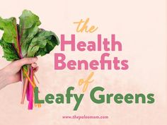 Did you know a mere 1/5th of a serving of leafy greens per day decreases risk of type 2 diabetes by 13%! Learn more in this week's blog post! #leafygreens #nutrivore #becausescience #guthealth Kale Juice, Paleo Mom, Turnip Greens, High Fat Diet, Gut Health, Fresh Vegetables, Diet And Nutrition, Superfood, Health Benefits