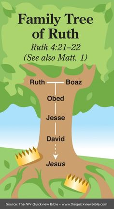 Headlines: Sex. Race. Risk. God. - Surprising Legacy - Ruth 4: 18 _22 Family Tree of Ruth - simple, starts with Ruth and Boaz