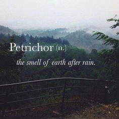 Petrichor. Tänker mig en fas där Leo flyr ut i skogen för att samla sig och bla beskriver doften av jorden efter ett regn.
