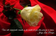 #enamorado