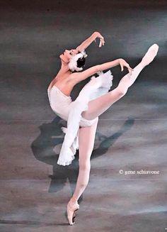 Skorit in Swan Lake Marinsky Ballet
