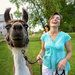 Goats, Alpacas and (of Course) a Hen: Life on a Hobby Farm - The New York Times