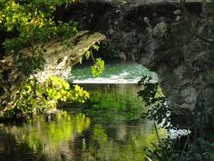 Ninfa #Gardens, Latina, #Italy , about 60 km from #Circeo