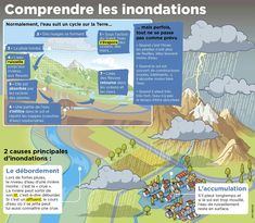 French Phrases, Meteorology, Science, French Language, Social Studies, Montessori, Study, Reading, Religion