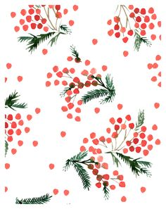 WINTER INSPIRED DESIGN WITH GREEN FIR SPRIGS AND RED BERRIES ON WHITE GROUND IN WATER COLOR.