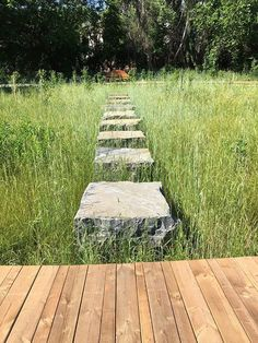 Robuuste stapblokken, uitgelijnd in weelderig grasland.