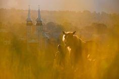 Romania-Maramures-girl-with-horse