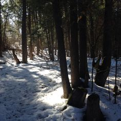 Yep you can hike in the winter too.