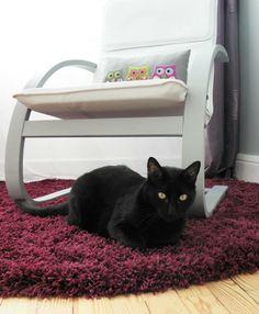 Loukoum monte la garde sur son tapis Shaggy Softy