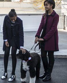 Stylish dog walkers - -  #BarackObama #MichelleObama #POTUS #FLOTUS #usa  #MaliaObama #SashaObama #forevermypresident #BarackObama #womensmarch  #forevermyfirstlady #FOREVER44 #FLOTUS44  #problack #feminism#colors#world  #obamafamily_forever_44  #mypresident #blacklivesmatter #beautiful  #BlackLove#BLM#ChiTownLove #blackexcellence#Obamas  #moderndaypresidential