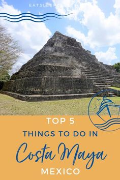 Are you dreaming of a tropical vacation to get away from the worries of the world? You should consider visiting Costa Maya, Mexico. Whether you visit on a cruise vacation or other travel, there are many excursions and you'll find something for everyone. Here we share the top 5 things to do while visiting this cruise port. Check it out to see if the beaches make our list! #CostaMaya #Mexico #MexicanVacation #CruiseVacation #Excursions Cruise Excursions, Cruise Port, Cruise Tips, Cruise Vacation, Mexico Vacation, Mexico Travel, Mexico Destinations, Travel Destinations, Western Caribbean