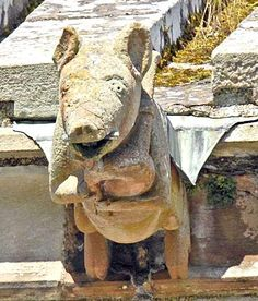 Yep, that's a pig playing the bagpipes. This unusual stone carving is found at Melrose Abbey, Scotland. This medieval foundation is meant to be where Robert Bruce's heart is buried.