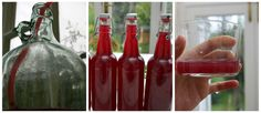 How I Made Wild Blackberry Cider | And Here We Are