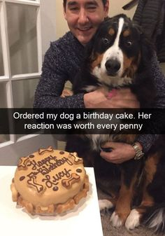 These spoiled dogs are living their best lives – 30 Pics