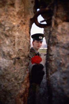 ベルリンの壁が取り壊される破壊の日の朝、壁の穴を通して花を渡す東ドイツの兵士(1989年11月10日)